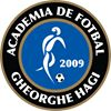 Academia de fotbal Gheorghe Hagi