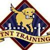 TNT Training