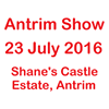Randox Antrim Show