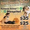 Humacao Animal Hospital