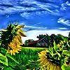 Meadow View Farms, LLC