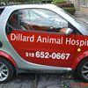 Dillard Animal Hospital