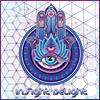 inSight deLight