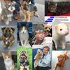 Extrordinair - Scotland's Border Inspection Post/Animal Receiving Centre