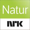 NRK Natur