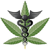 Chicago Top-shelf online marketing for the cannabis industry.
