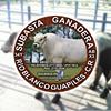 Subasta Ganadera Río Blanco