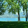 Vacations at Lake Chelan