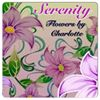 Serenity - Flowers by Charlotte