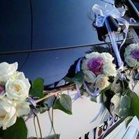 Λουλουδένια Όνειρα Οργάνωση  Γάμου- Βάπτισης
