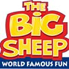 The BIG Sheep Family Attraction
