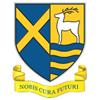 St Albans Girls' School