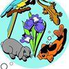 Porton Garden Aquatic and Pets
