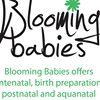 Blooming Babies