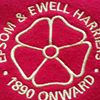 Epsom & Ewell Harriers