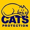 Isle of Wight Cats Protection Adoption Centre