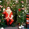 Hatfield House Christmas Frost Fair