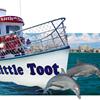 Little Toot Dolphin Adventure