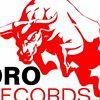 Toro Studios