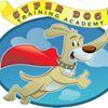 Super Dog Training Academy