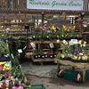 Riverside Garden Centre Chesterfield