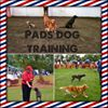 Pads Dog Training Centre