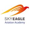 SkyEagle Aviation Academy