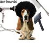 Scissor Hounds