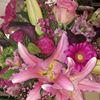 Blossom Shoppe Etc...
