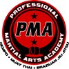 Professional Martial Arts Academy