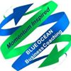 Blue Ocean Business Coaching & Mastermind Groups