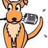 Soggy Dog Recording Studios Upwey