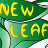 A New Leaf, Market & Cafe