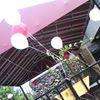Alfredas soulfood cafe