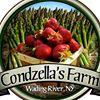 Condzella's Farm