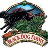 Black Dog Farms
