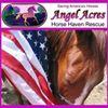 Angel Acres Horse Haven Rescue, Inc.