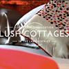 Lush Cottages