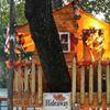 The Tree House Tavern