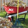 Williams Ace Hardware
