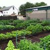 The Garden Project of the Food Bank of WNY