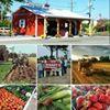 DeHarts Farm Fresh Produce