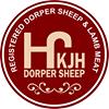KJH Dorper Sheep & Lamb