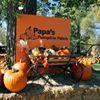 Papa's Pumpkin Patch and Papa's Polar Patch