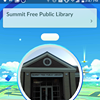 Summit Library Youth Services