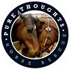 Pure Thoughts Horse Rescue, Inc.