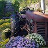 Walker Farm - Dummerston, Vermont