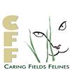 Caring Fields Felines