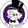 Mr. Dog Training; Voted #1 in Maine