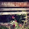 Agoura Hills Animal Shelter